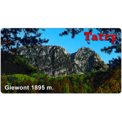 Magnes 98x53 mm TATRY - GIEWONT